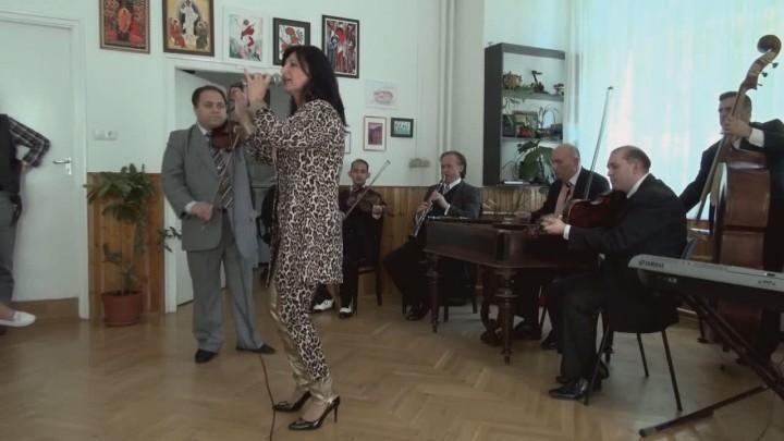 Zenészek közmunkában